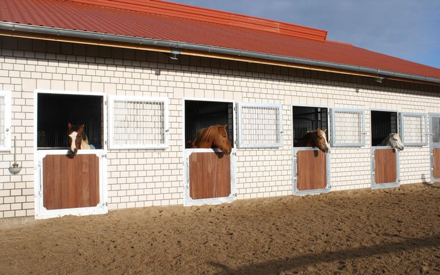 Boxenstall in Luechow bei Sandesneben